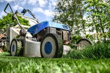 lawn mower cutting fertilized grass