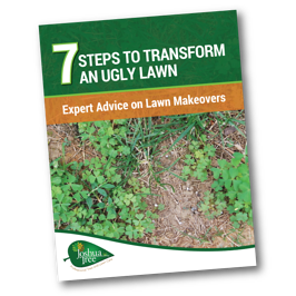 7 steps to transform an ugly lawn in Allentown, Bethlehem, and Easton, PA