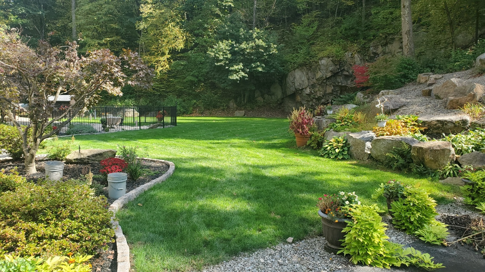 Emmaus, PA after photo of lawn