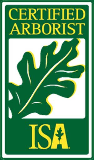 ISA Certified Arborists in Allentown, Bethlehem, and Easton, PA