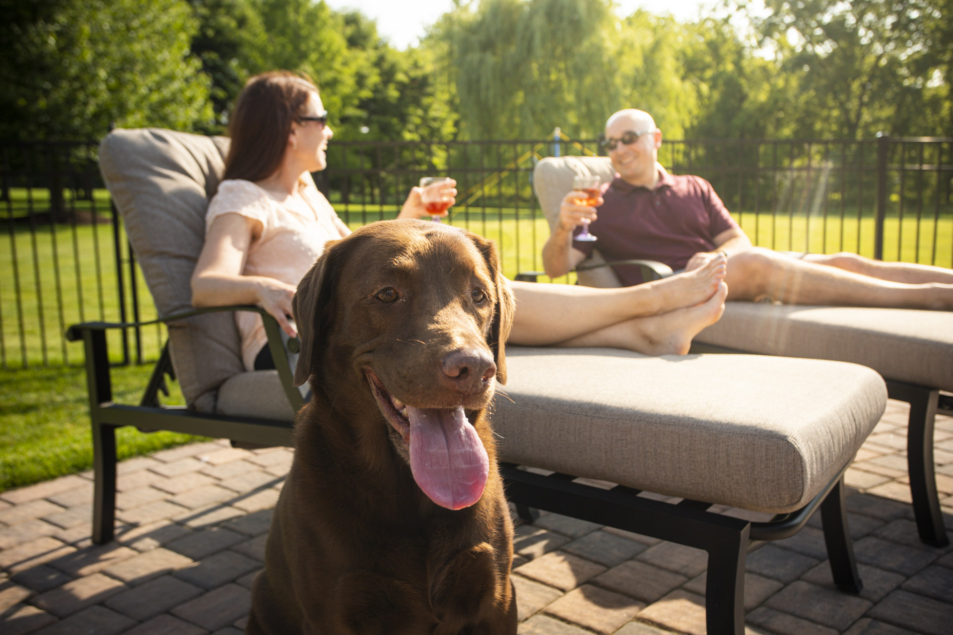 homeowners and dog enjoying lawn with no pests