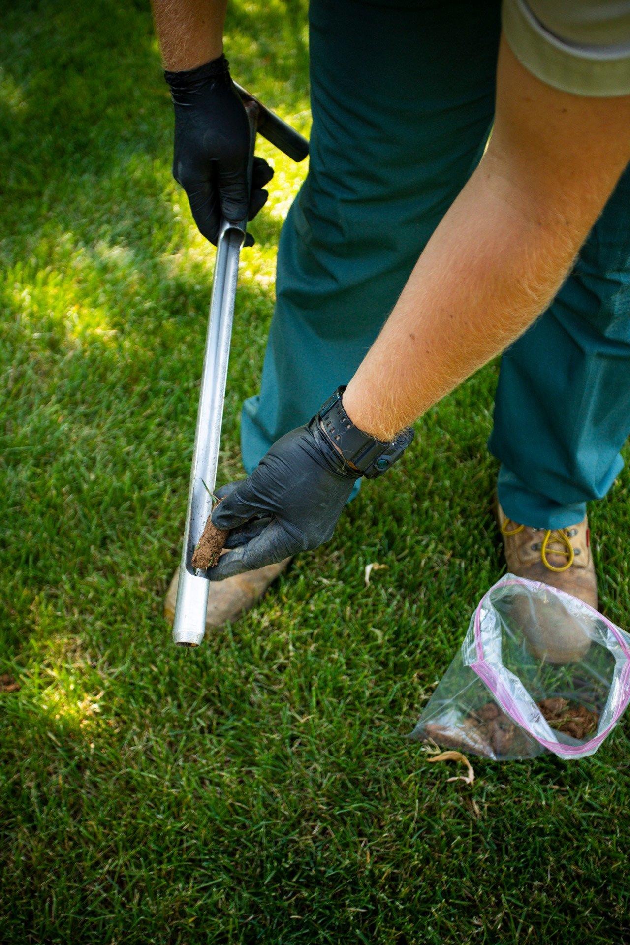 Lawn soil pH tesh