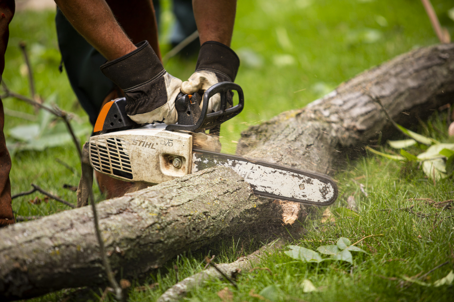 tree removal technician using a chainsaw