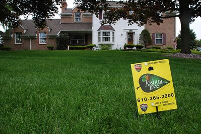 Joahua Tree Lawn Care sign in nice lawn in PA
