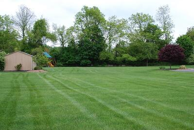 Lawn mowed correctly in Allentown, PA