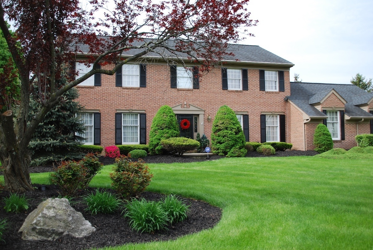 Nice lawn with lawn care services