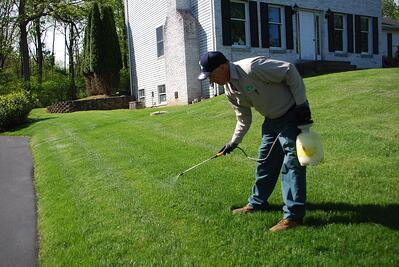lawn care company technician applying spot spray