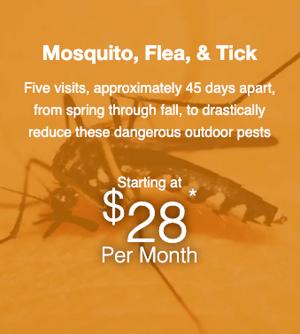 mosquito flea tick control