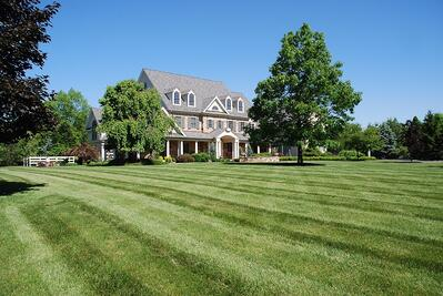 Lawn and trees treated by tree care company in Allentown, PA
