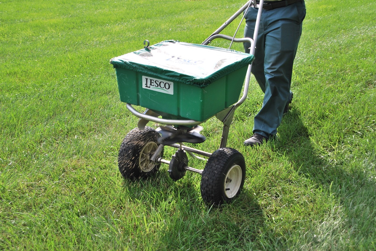 Lawn seed application
