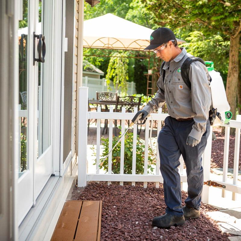 pest control technician jobs
