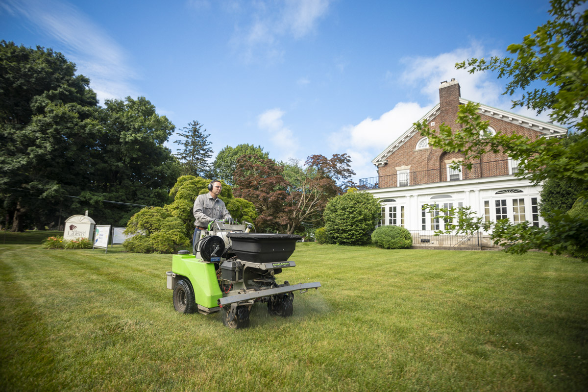 commercial lawn care technician spraying