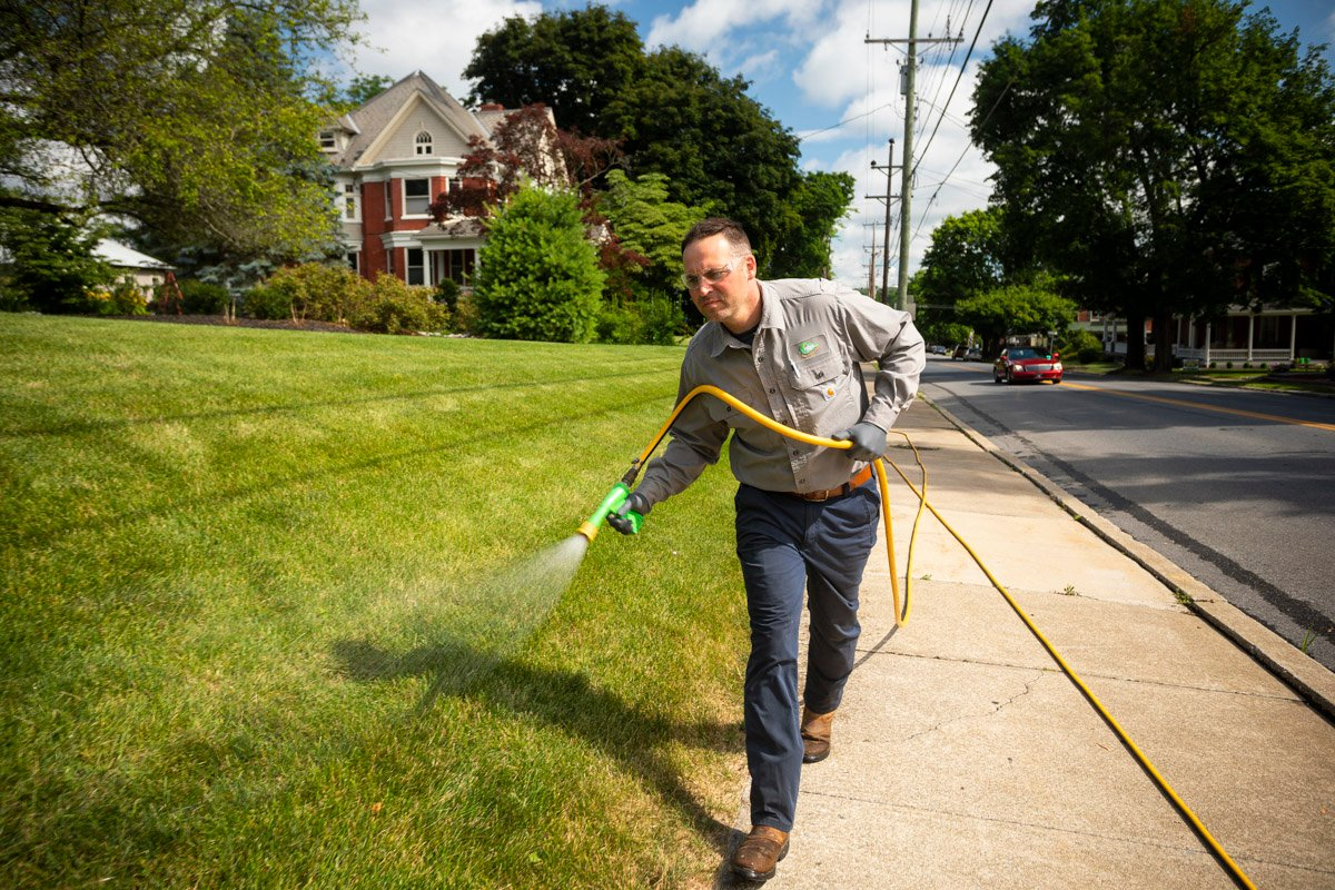 Commercial lawn care crew spraying a lawn