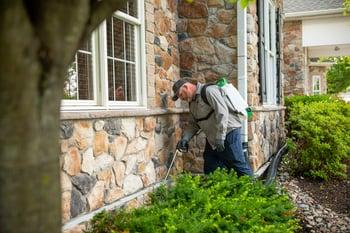 pest control technician working for Joshua Tree