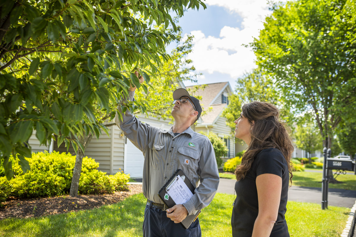 Certified arborist speaking with a customer about their tree