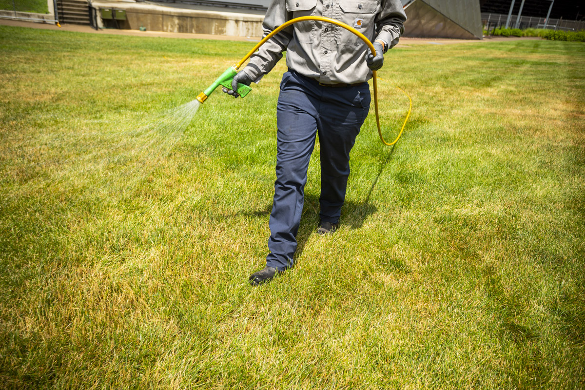Spraying for weeds