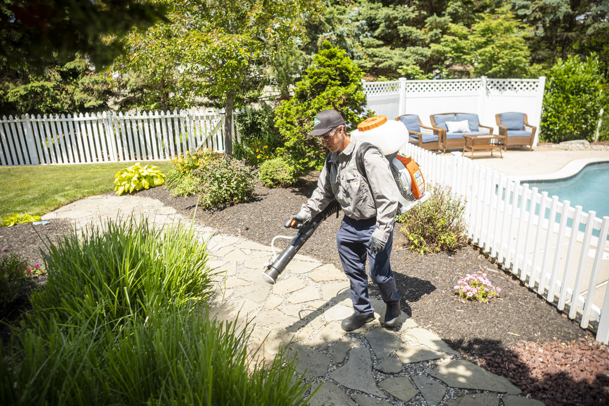 Pest control technician spraying outside