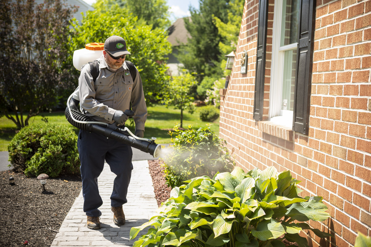 Pest control technician spraying mosquito control