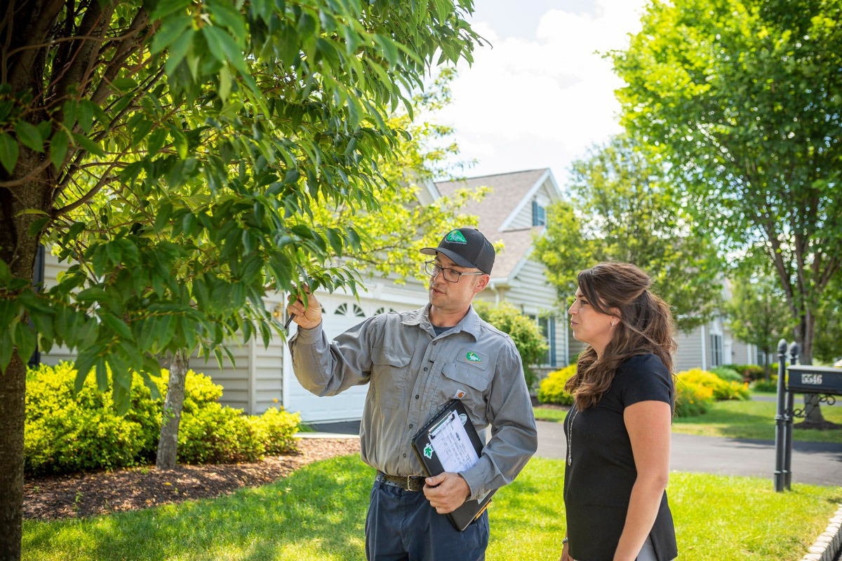 Tree care technician talking with a customer