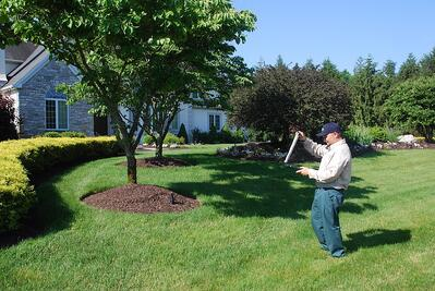 lawn care professional diagnosing lawn problem