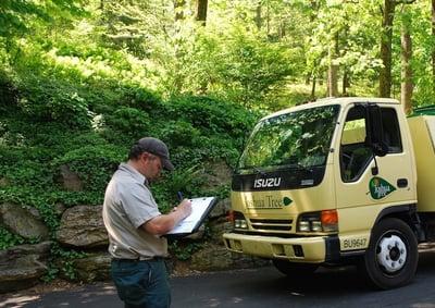 Joshua Tree professional tree inspection