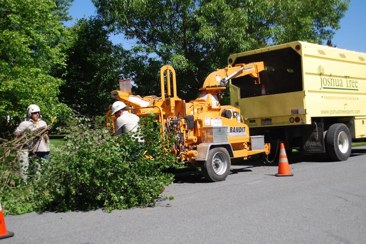 Joshua Tree tree removal truck