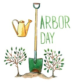 Give Arbor Day More Than Just a Passing Thought