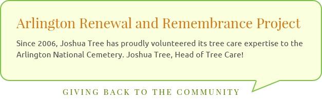 Arlington Renewal and Remembrance Project