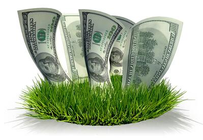 DIY lawn care vs. using a pro lawn service