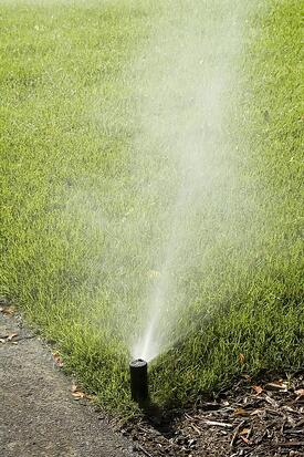 How to get rid of crabgrass with crabgrass preventer, spraying crabgrass and more.
