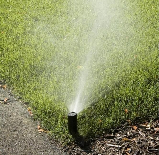 watering-lawn-allentown-bethlehem-easton-pa-1