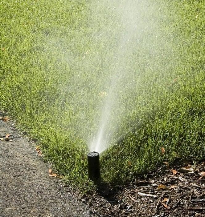 watering-lawn-allentown-bethlehem-easton-pa