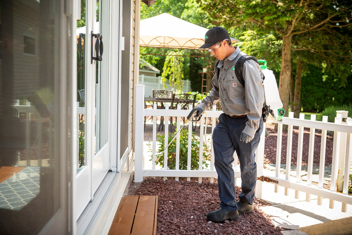 pest control technician working for Joshua Tree in Lehigh Valley