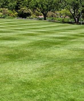 Lawn limestone treatment in Allentown, Bethlehem, and Easton, PA
