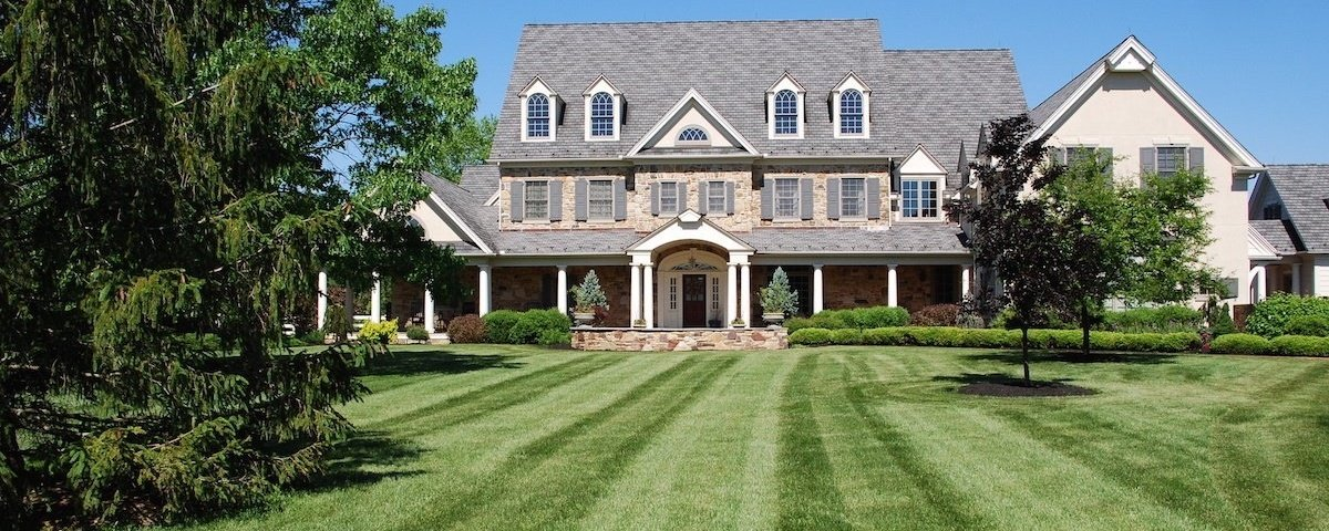 The Ultimate Lawn Care Guide