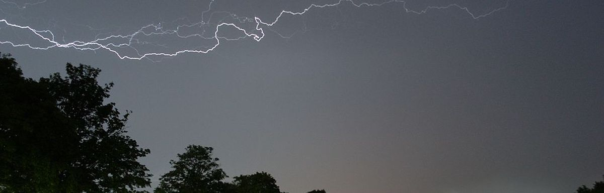 Tree lightning protection services in Allentown, Bethlehem, and Easton, PA