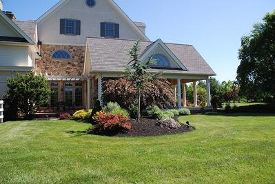 Comparing Trugreen Allentown, PA with local lawn care services.
