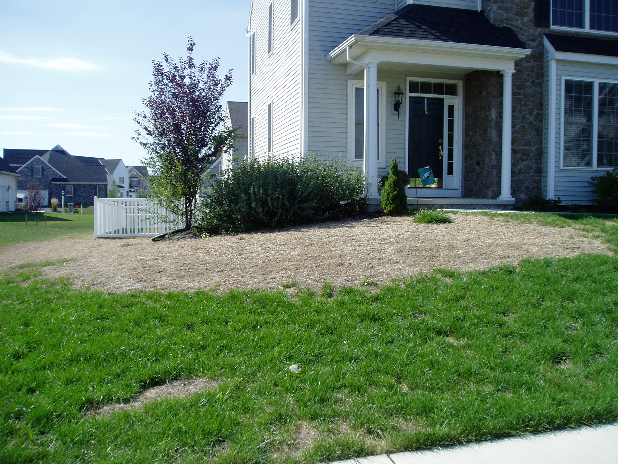 7 Tell-Tale Signs and Symptoms of Big Lawn Problems in Allentown, Bethlehem, and Easton PA