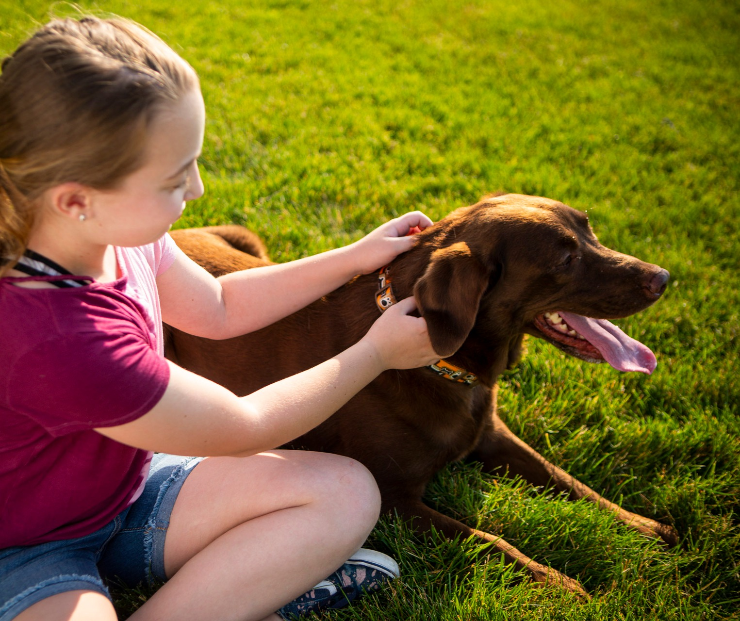 Child and dog in lawn with flea and tick control
