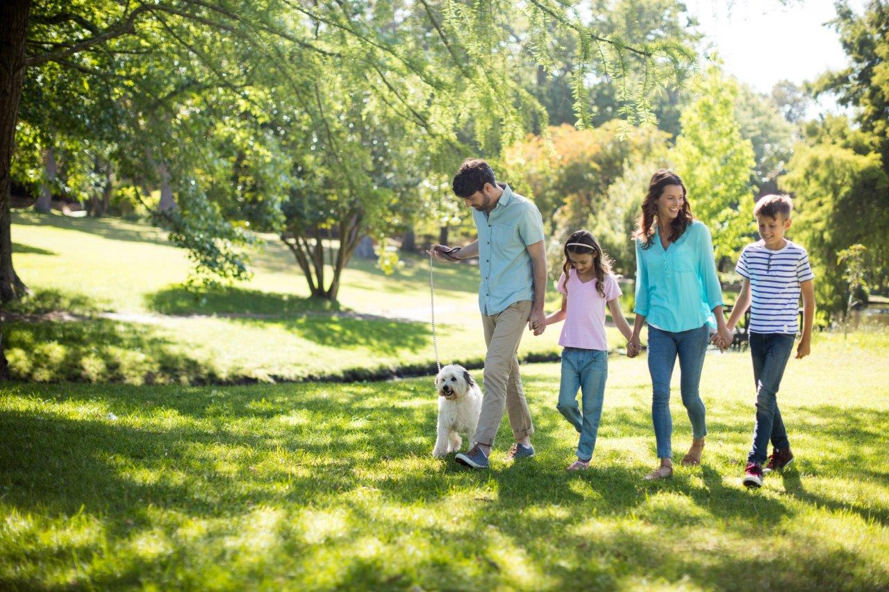 family and dog in lawn and trees