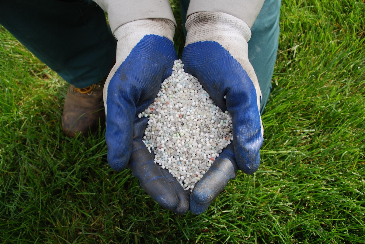11 Lawn Fertilizing Myths