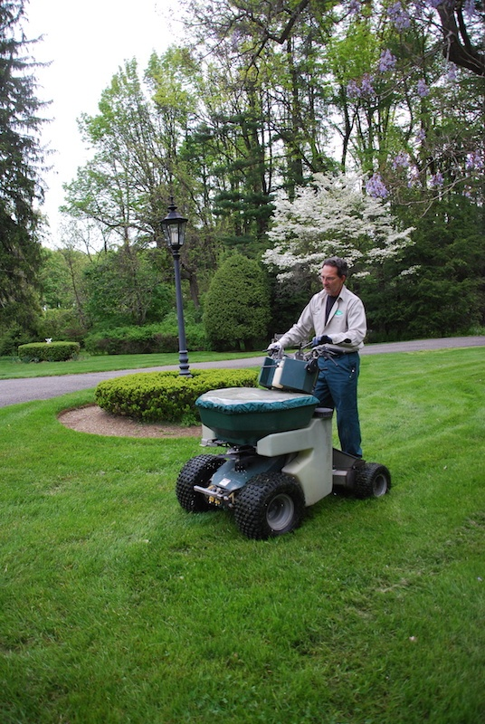 10 Lawn Maintenance Tips for a Thick, Green Lawn in Pennsylvania