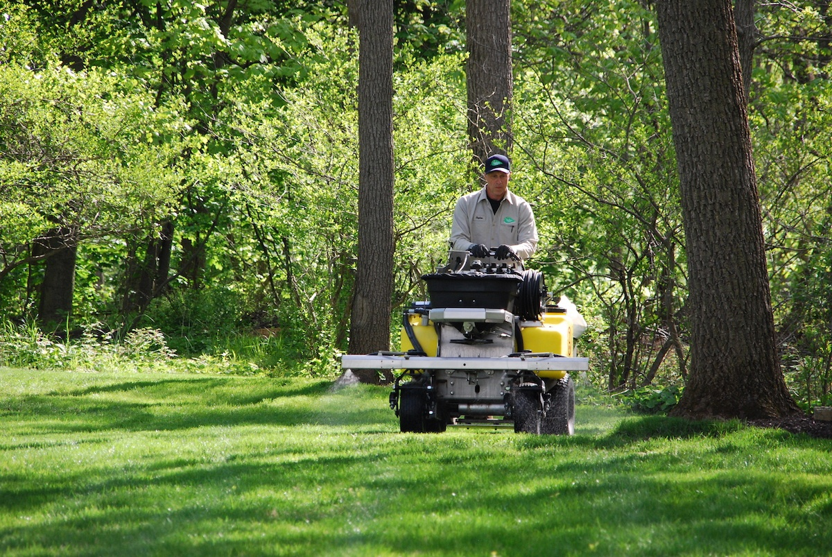 9 Truth-Revealing Questions to Ask Before Hiring a Lawn Care Service