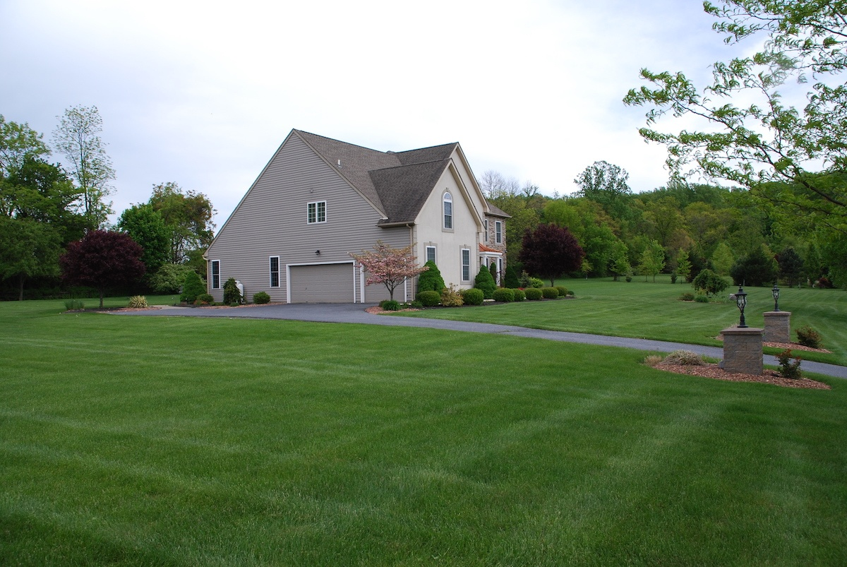 Ugh! Why is My Lawn Not Dark Green? 7 Reasons & 7 Tips