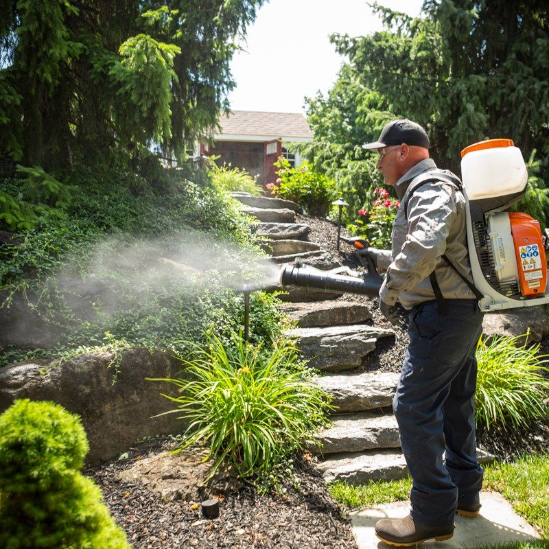 mosquito control Allentown, Lansdale PA