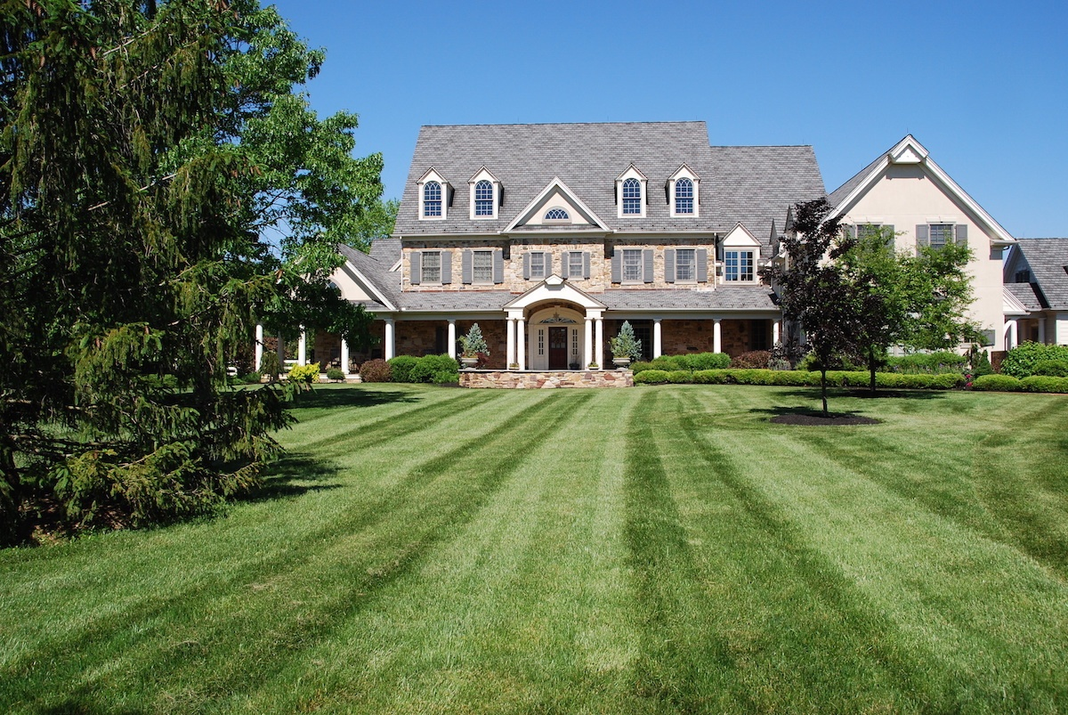 DIY vs. Professional Lawn Care Services in Allentown, Bethlehem, and Easton, PA