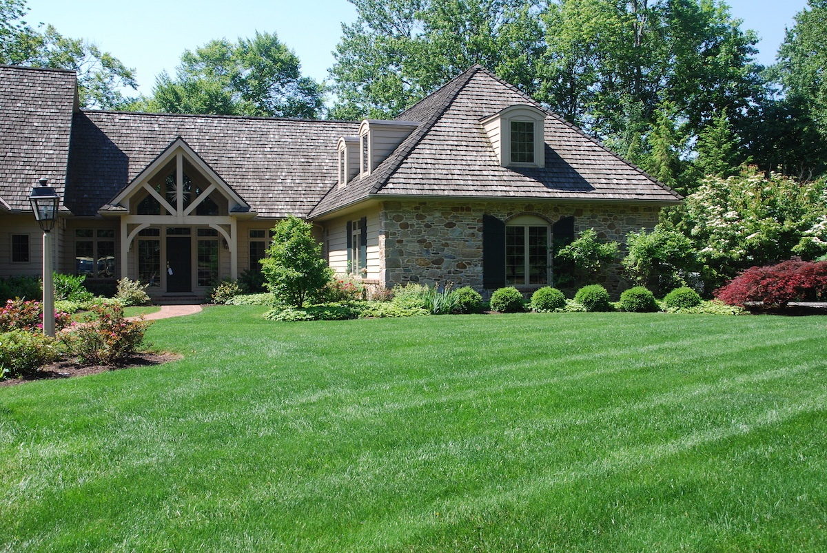 nice lawn with professional lawn care