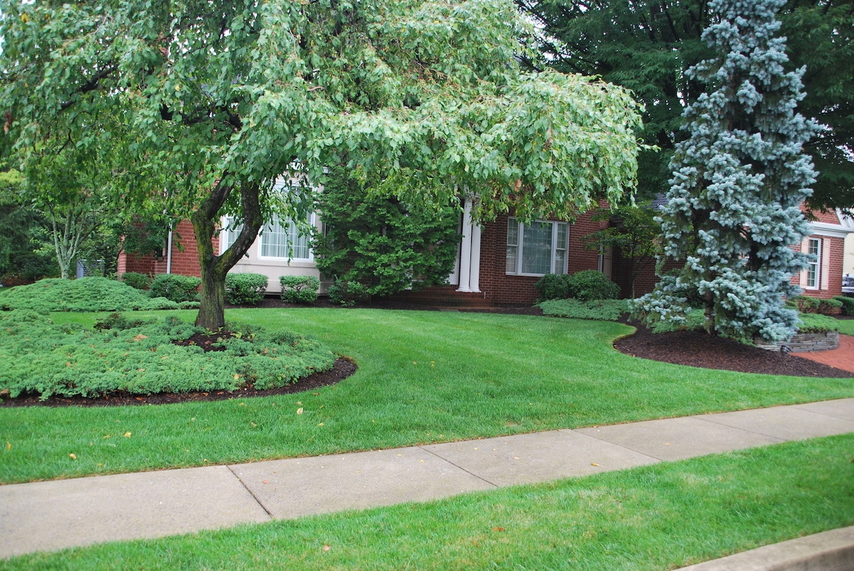 Soil Testing Trees and Lawns in Pennsylvania