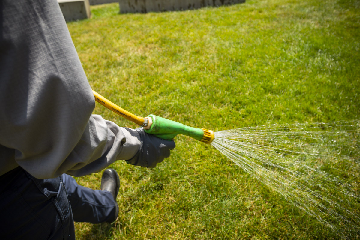 lawn technician spraying lawn