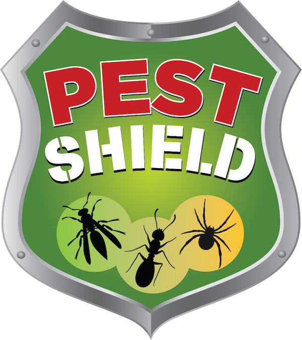 How Much Does Pest Control Cost? Understanding Prices from Exterminators in Allentown, Bethlehem, & Easton, PA